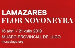 Flor Novoneyra. Lamazares