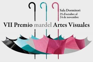 VII Premio mardel Artes Visuales 2019