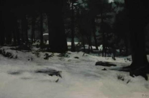Eloys Morales, Paisaje nevado