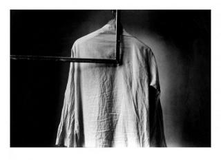 Camisa 1979, Julia Toro