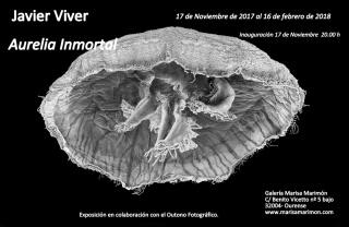 Javier Viver. Aurelia Inmortal