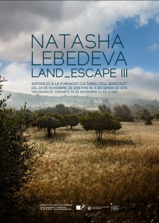 Natasha Lebedeva. Land_escape III