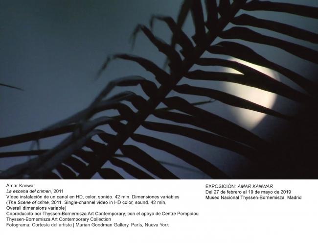 Amar Kanwar, La escena del crimen, 2011. Fotografía: Cortesía del artista | Marian Goodman Gallery — Cortesía del Museo Nacional Thyssen-Bornemisza