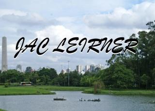 Jac Leirner