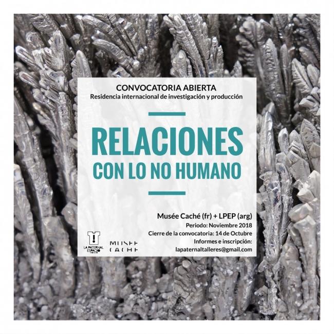 Relaciones con lo no humano