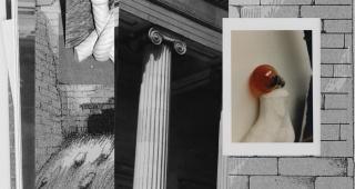 Narrativas en las fisuras del tiempo y el espacio — Cortesía del Museo de la Universidad de Alicante (MUA)