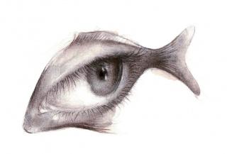 Ilustración de Gloria Lapeña — Cortesía de la Fundación Daniel y Nina Carasso