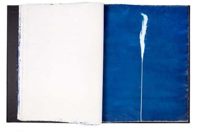 Rosell Meseguer, Cianotipia sobre papel, 80 x 60 cm, 2008 — Cortesía del artista