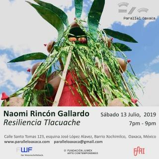 Resiliencia Tlacuache