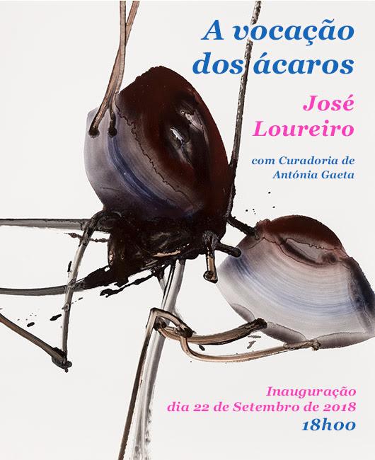 José Loureiro. A Vocação dos Ácaros