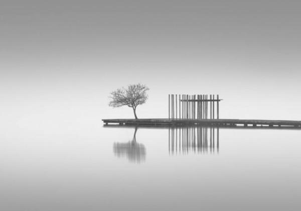 Miguel Cabezas, El lago -accésit-
