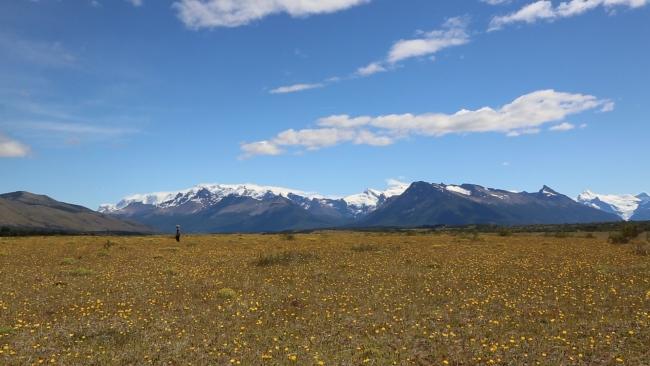 Patagonia 2016  Caminhada Cavalos