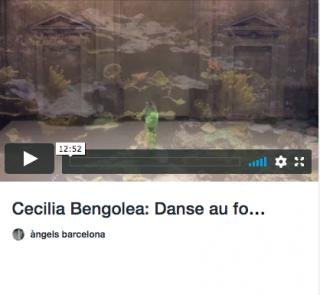 """Videos de la exposición """"Bridging the fragile"""""""