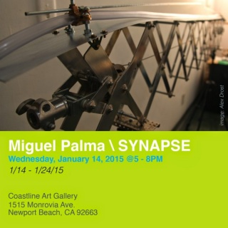 Miguel Palma, Synapse