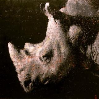Jon Landa, Rhino, 2014, Oil on Canvas, 100 x 100 cm