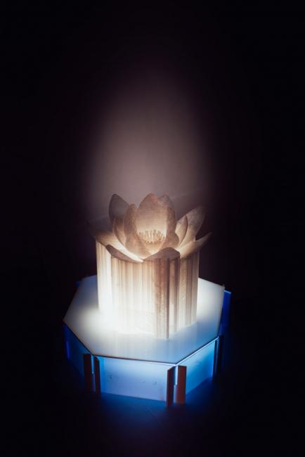 Noemí Iglesias. Emotional rescue  Imagen: Marco Mas — Cortesía de LABoralCentro de Arte y Creación Industrial