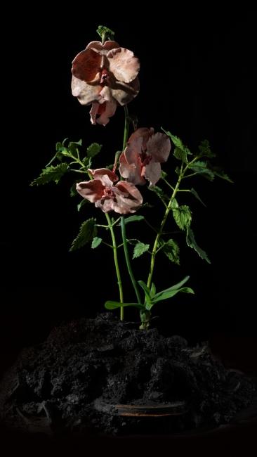 Mat Collishaw, The Venal Muse. lmpetus, 2012. Resina, esmalte, madera, vidrio y acero, 163 x 52 x 52 cm. Cortesía del artista y Blain l Southern