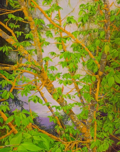 abstraccion natural