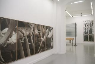 Txuspo Poyo. Testigos Oculares — Cortesía de la Galería Vanguardia