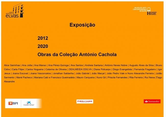 2012-2020: Obras da Coleção António Cachola