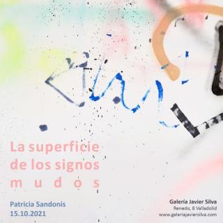 Patricia Sandonis. La superficie de los signos mudos