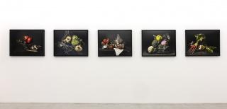 Panorámica de la exposición Dora Franco - Bodegones
