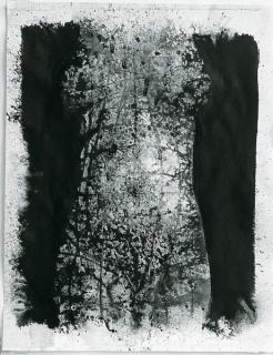 Eulàlia Valldosera, s-t. (Tors frontal) (serie El ombligo del mundo. Tintas #34), 1990. Tinta china sobre papel acuarela fino, 65x50 cm.