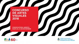 Concurso de Artes Visuales 2018. Imagen cortesía Fondo Nacional de las Artes