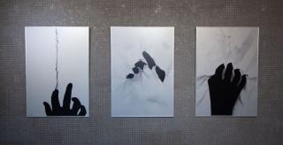 "Regina Silveira, ""Dividing Line"", ""Reverso"", ""Verso"", 2020 — Cortesía de Luciana Brito Galeria"
