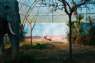 Exílio da paisagem