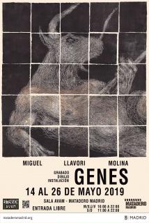 Miguel Llavori Molina. Genes