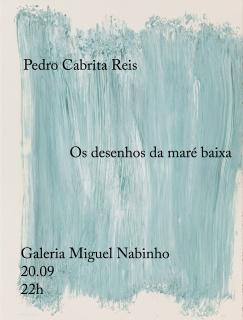 Pedro Cabrita Reis. Os desenhos da maré baixa