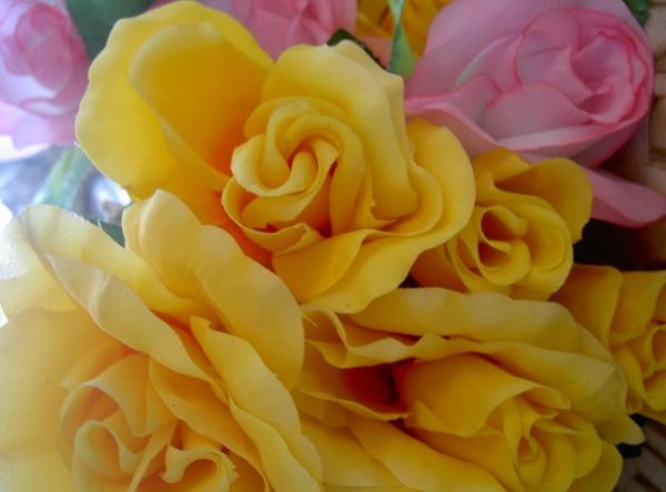 RAMON SICART. Roses, 2003. fotografia en caixa de llum. 70 x 100 cm.