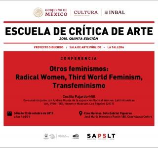 Otros feminismos: Radical women, third world feminism, transfeminismo