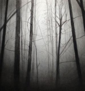 Katarzyna Pacholik, S/T,. Detalle. Carbón en polvo y lápiz conté sobre papel — Cortesía de la Galería Isabel Hurley