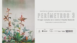 perimetros3