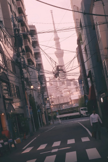 Tokyo No Sora