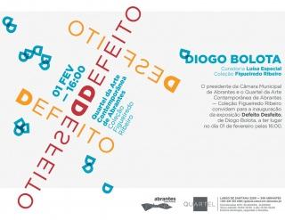 Diogo Bolota. Defeito Desfeito