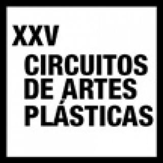 XXV Edición de Circuitos de Artes Plásticas 2014