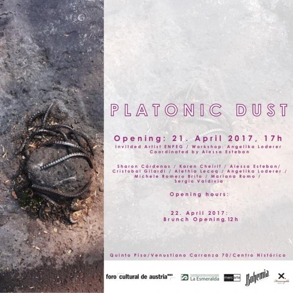Platonic Dust