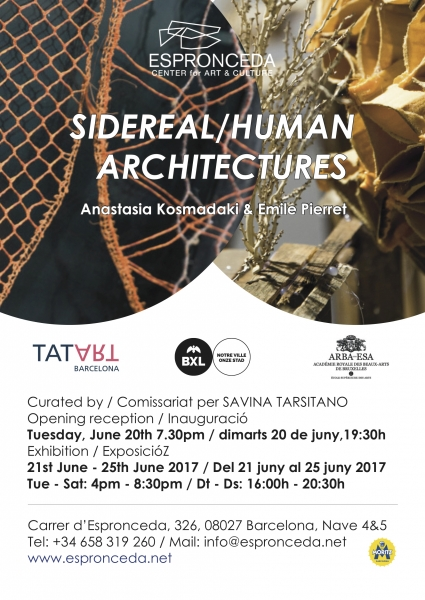 Poster Sidereal/Human Architectures