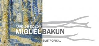 Aprendendo com Miguel Bakun: Subtropical