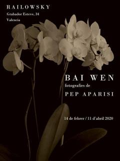Pep Aparisi. Bai Wen
