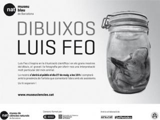 Luis Feo, Dibuixos