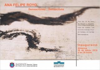 Ana Felipe Royo. Sensaciones