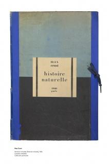 Max Ernst, Histoire naturelle, 1926, Carpeta entelada. Colección particular — Cortesía de la Fundación Juan March