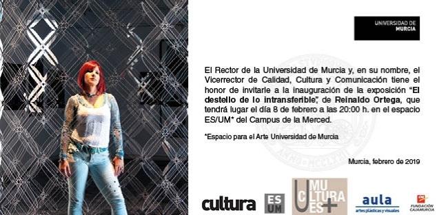 Exposición El destello de lo intransferible, de Reinaldo Ortega