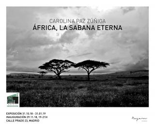 Carolina Paz Zúñiga   África, la Sabana eterna