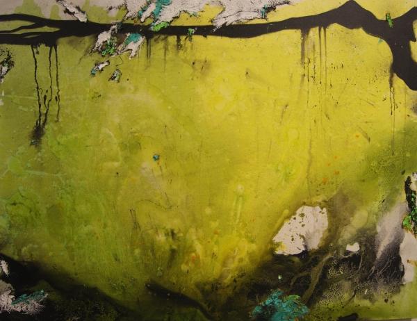 Fernando Palacios_Incognita Natura, Nº 11. 100X130. Mixta-lienzo (2016)