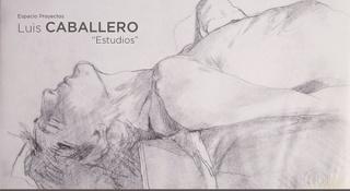 Luis Caballero. Estudios